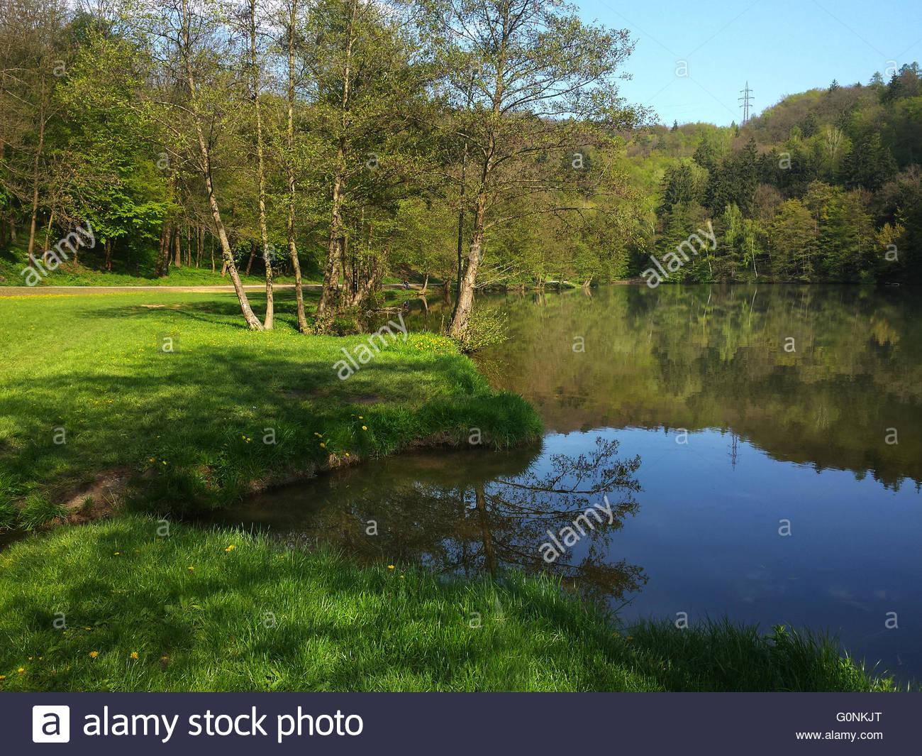 Beautiful sunny spring day in Marianske Udoli near Brno, Czech Republic. Phone photo - Stock Image