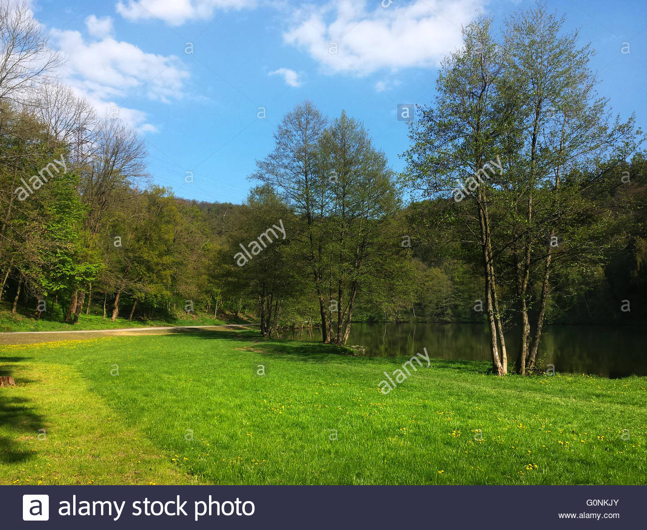 Beautiful spring day with green grass and blue sky at Marianske Udoli near Brno, Czech Republic. Phone photo - Stock Image