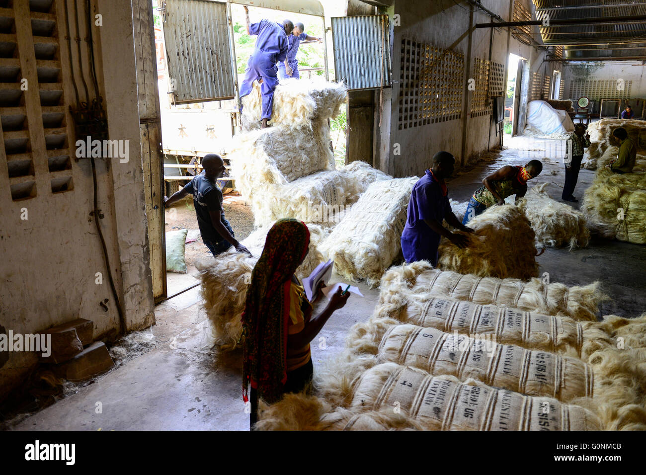 TANZANIA Tanga, Sisal industry, Tancord 1998 Ltd., processing of sisal fibres to yarn rope mat carpet / TANSANIA - Stock Image