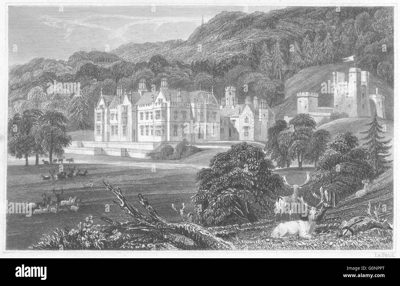 DEVON: Mamhead Hall, near Dawlish (The seat of RW Newman Esq), old print 1829 - Stock Image