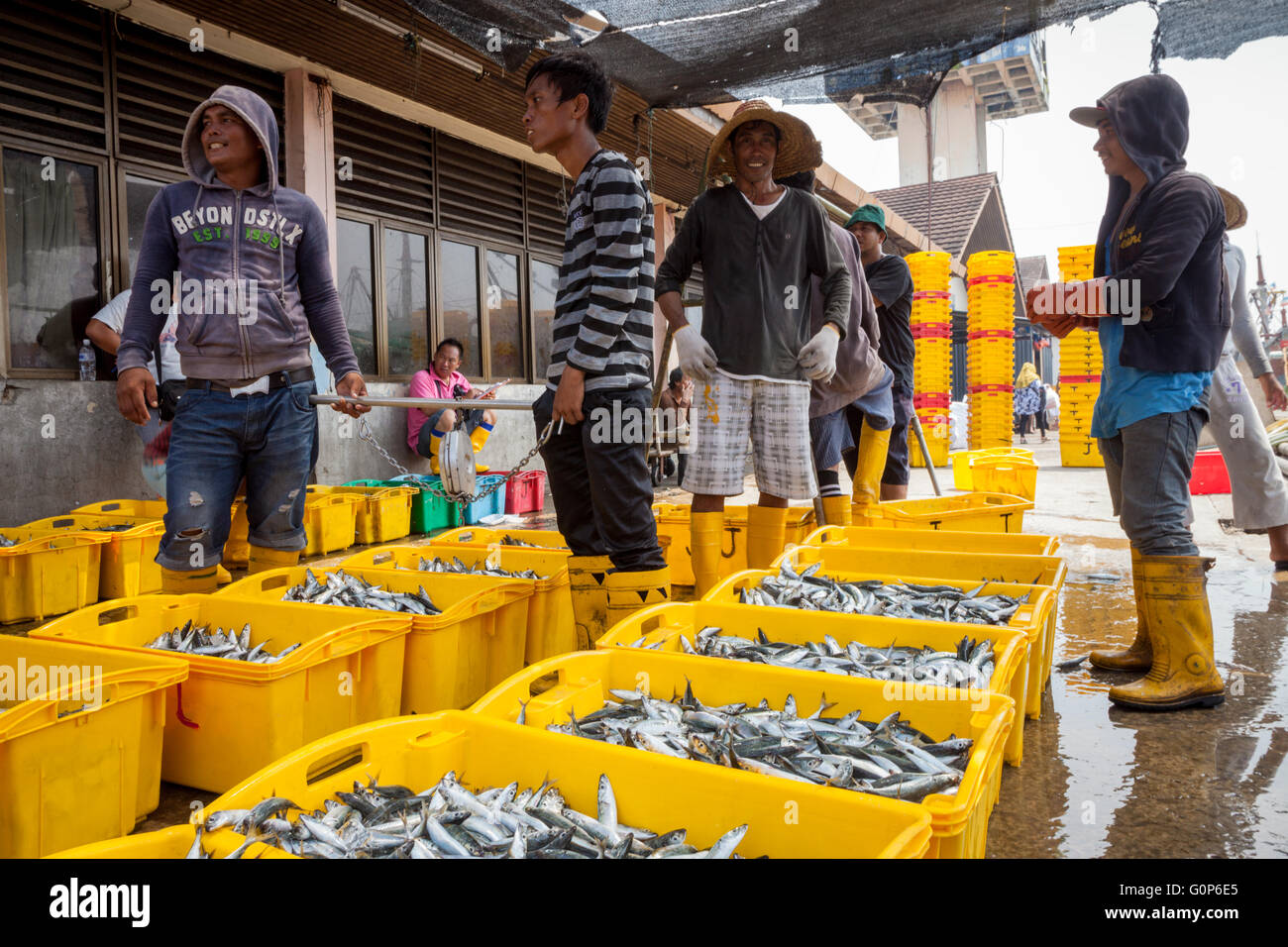 Workers on the dock handling fish from the South China Sea, Kota Kinabalu, Borneo Malaysia - Stock Image