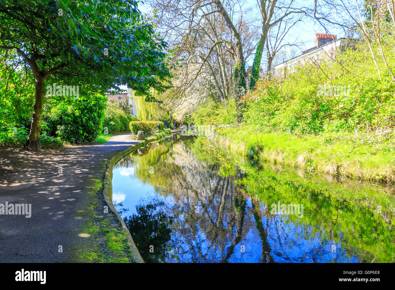Sunlit canal with surrounding foliage and trees reflected at the New River Walk, Canonbury, London - Stock Image