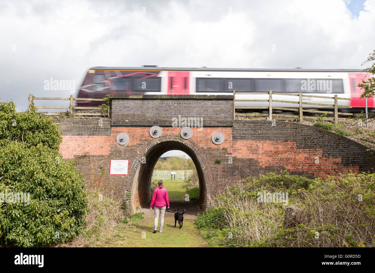 East Midlands train crossing access tunnel between Lichfield and Burton upon Trent, Saffordshire, England, UK - Stock Image