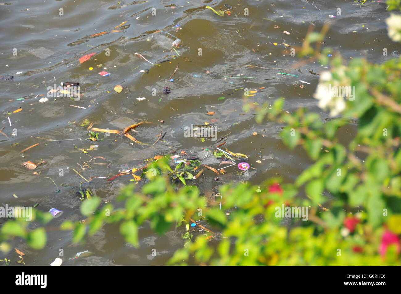 Pollution in the river Chao Phraya Bangkok Thailand - Stock Image