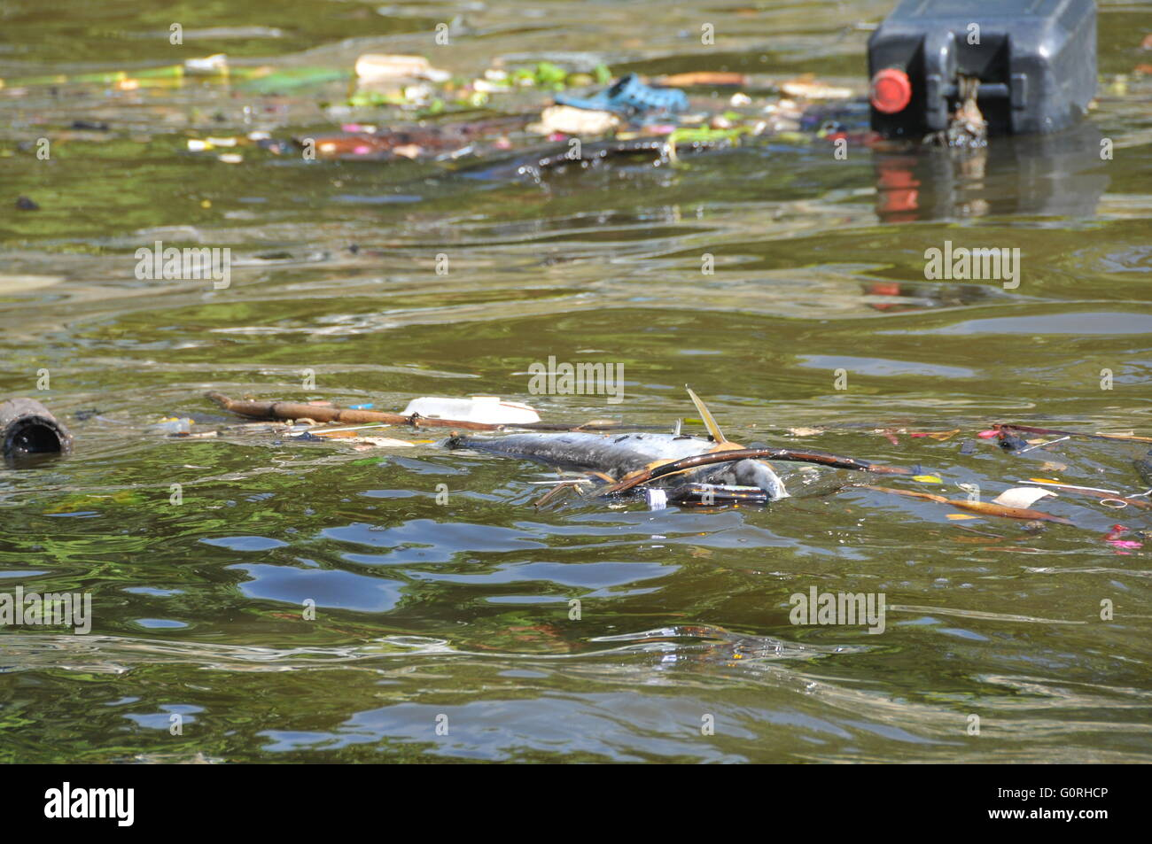 River Pollution in Thailand - Stock Image