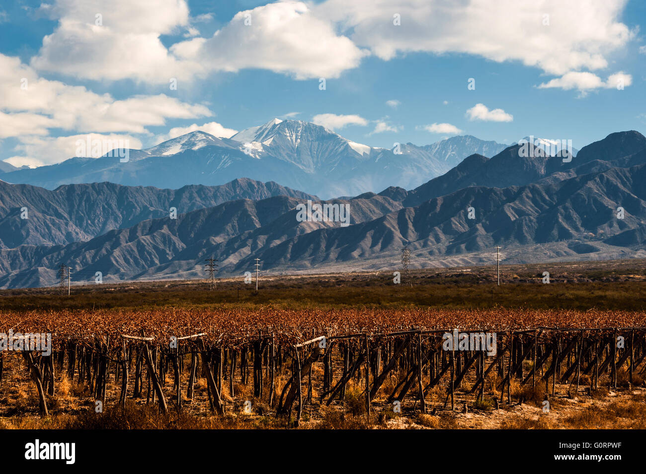 Volcano Aconcagua and Vineyard, Argentine province of Mendoza - Stock Image