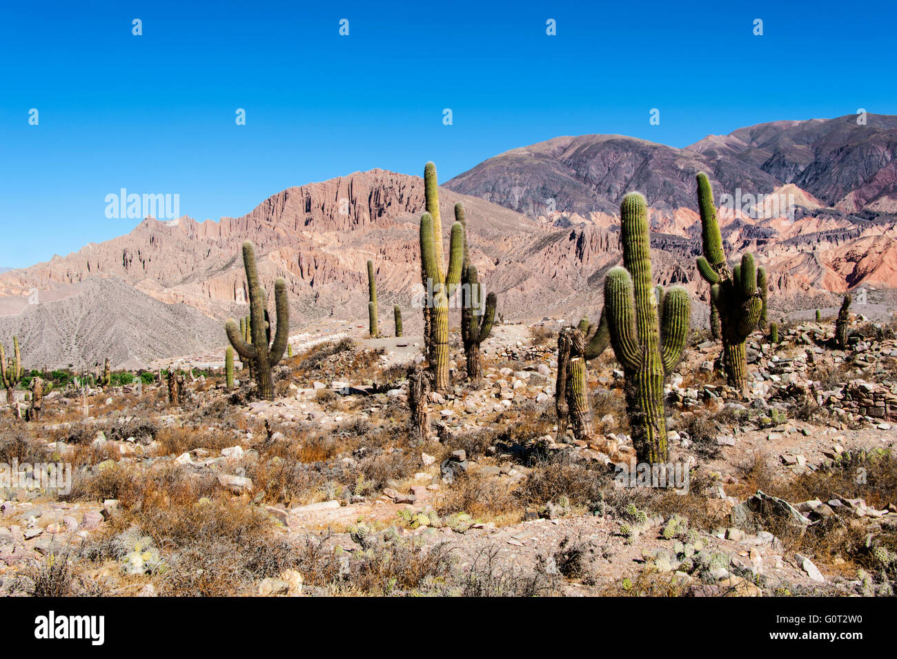 Colorful valley of Quebrada de Humahuaca, central Andes Altiplano, Argentina - Stock Image
