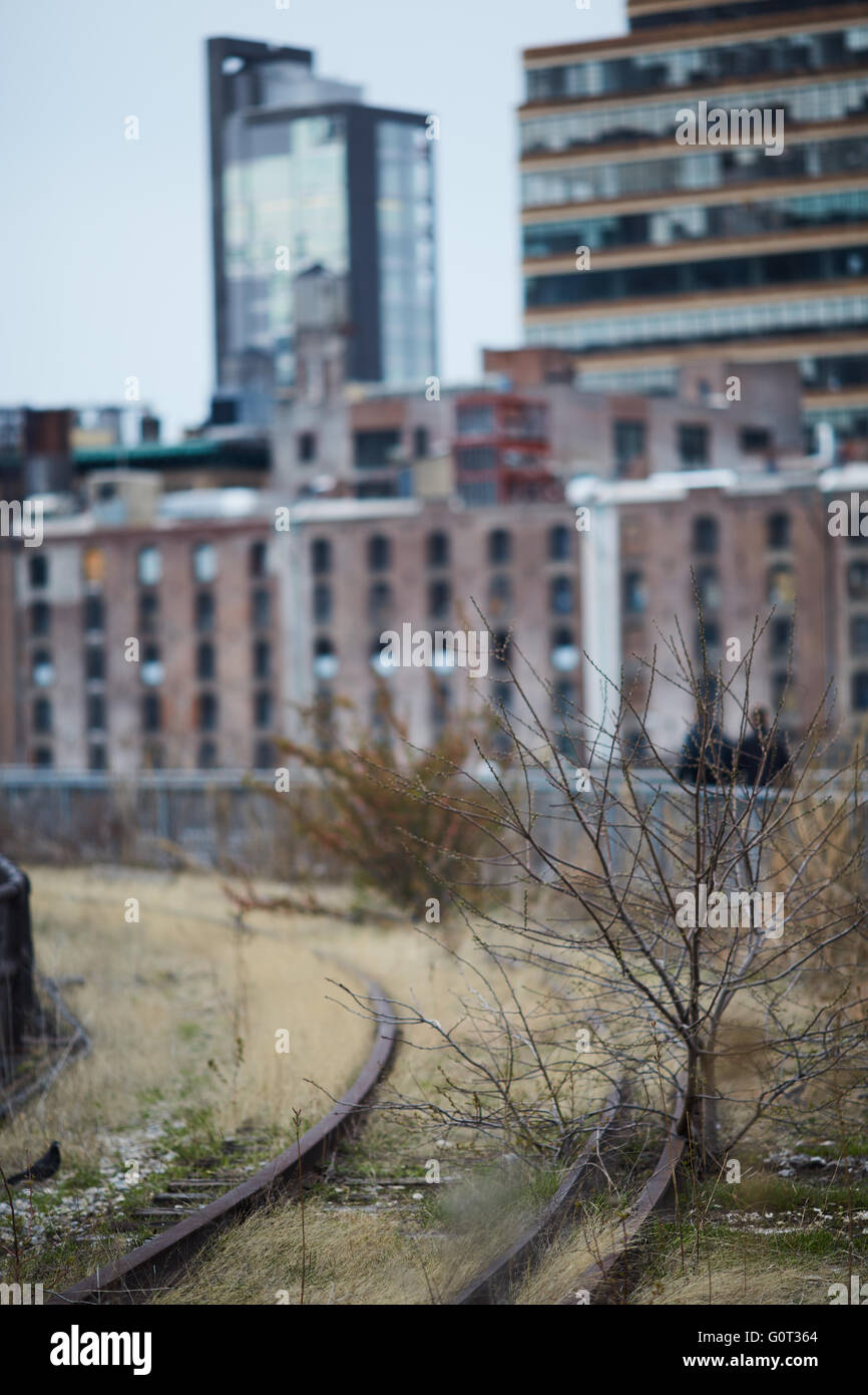New york   The High Line (also known as the High Line Park) is a linear park built in Manhattan on an elevated section - Stock Image