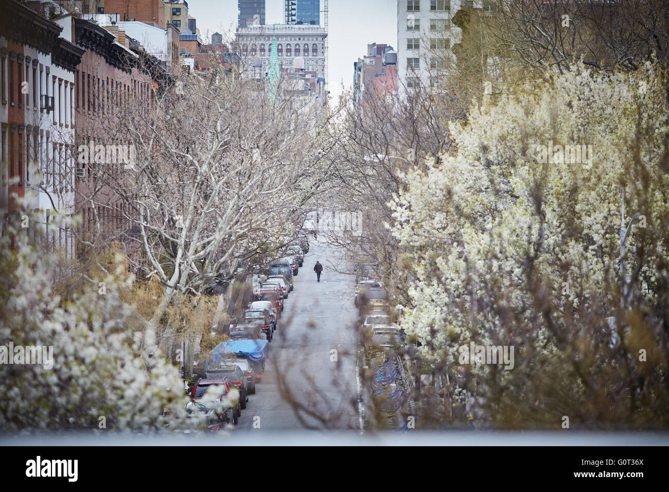 New york view from  The High Line (also known as the High Line Park) is a linear park built in Manhattan on an elevated - Stock Image