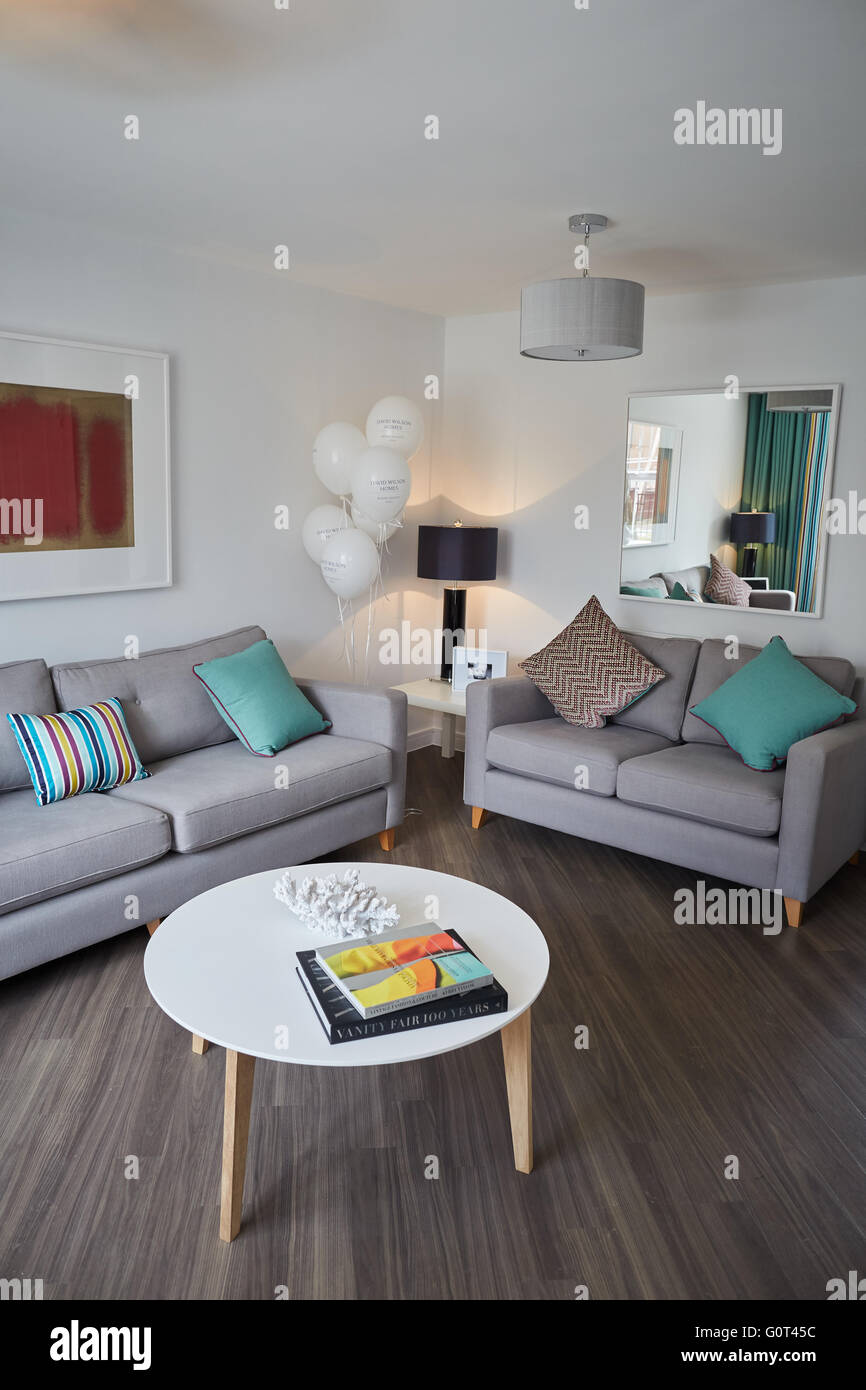 show home interior   living room main front sofa coffee table space Suburban suburbia  suburbs town village local - Stock Image