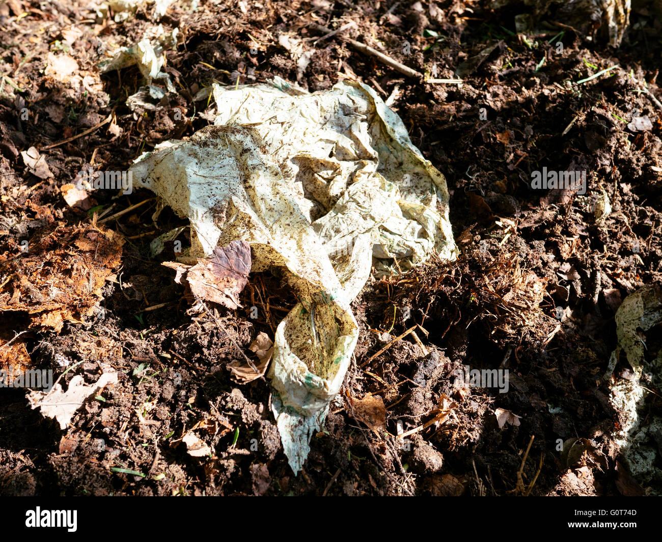Compostable bag in a compost after a year. Stock Photo