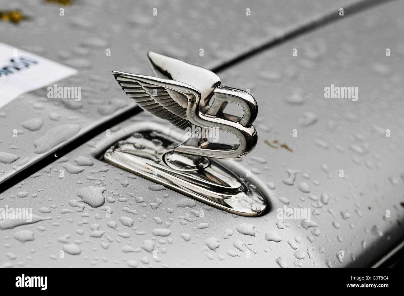 Front mascot on the bonnet of a 2016 Bentley Mulsanne - Stock Image