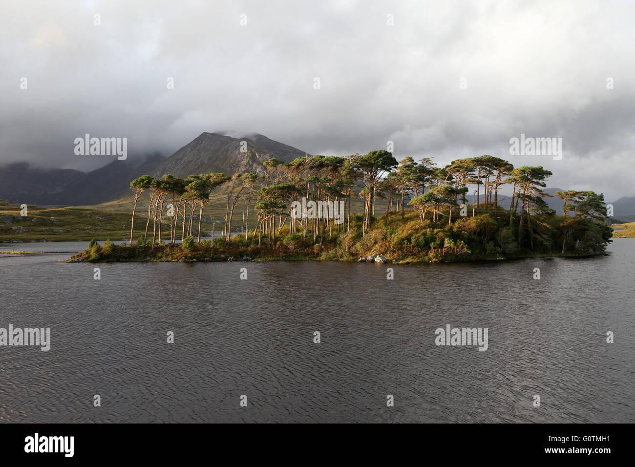 Twelve Bens, Derryclare Lough, Connemara, County Galway, Ireland - Stock Image