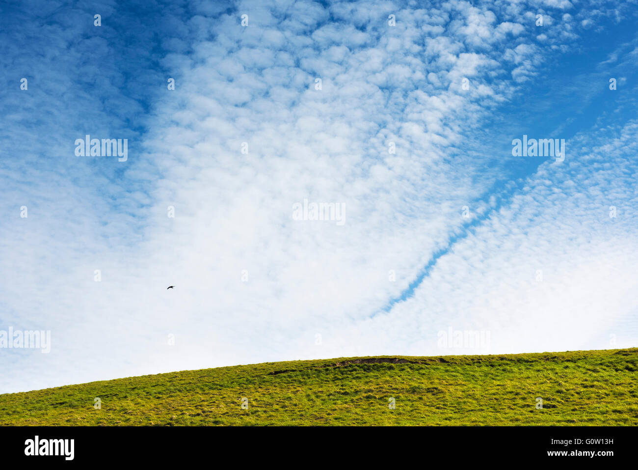 Clouds in the sky. - Stock Image