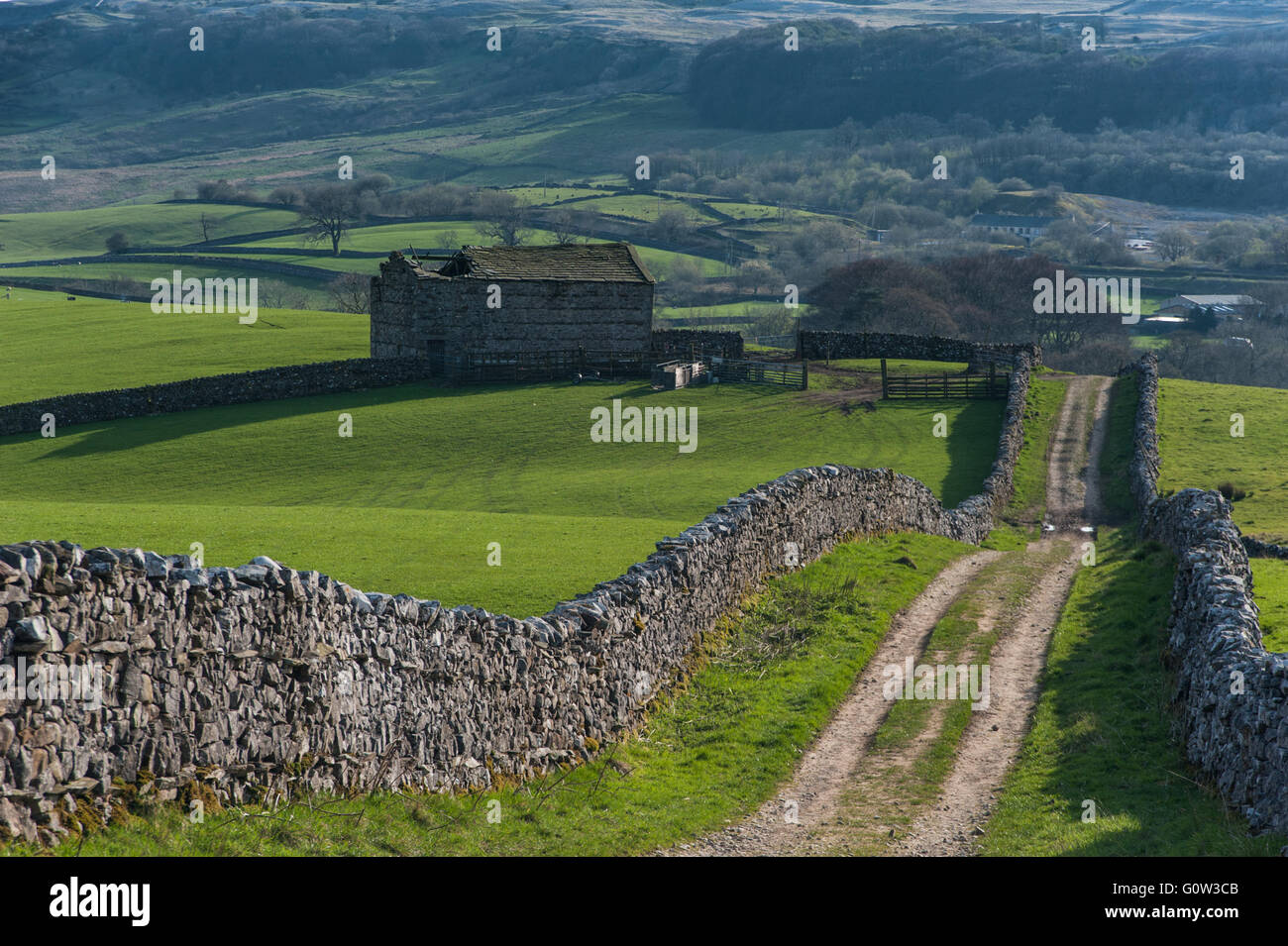 The Pennine Way near Horton-in-Ribblesdale - Stock Image