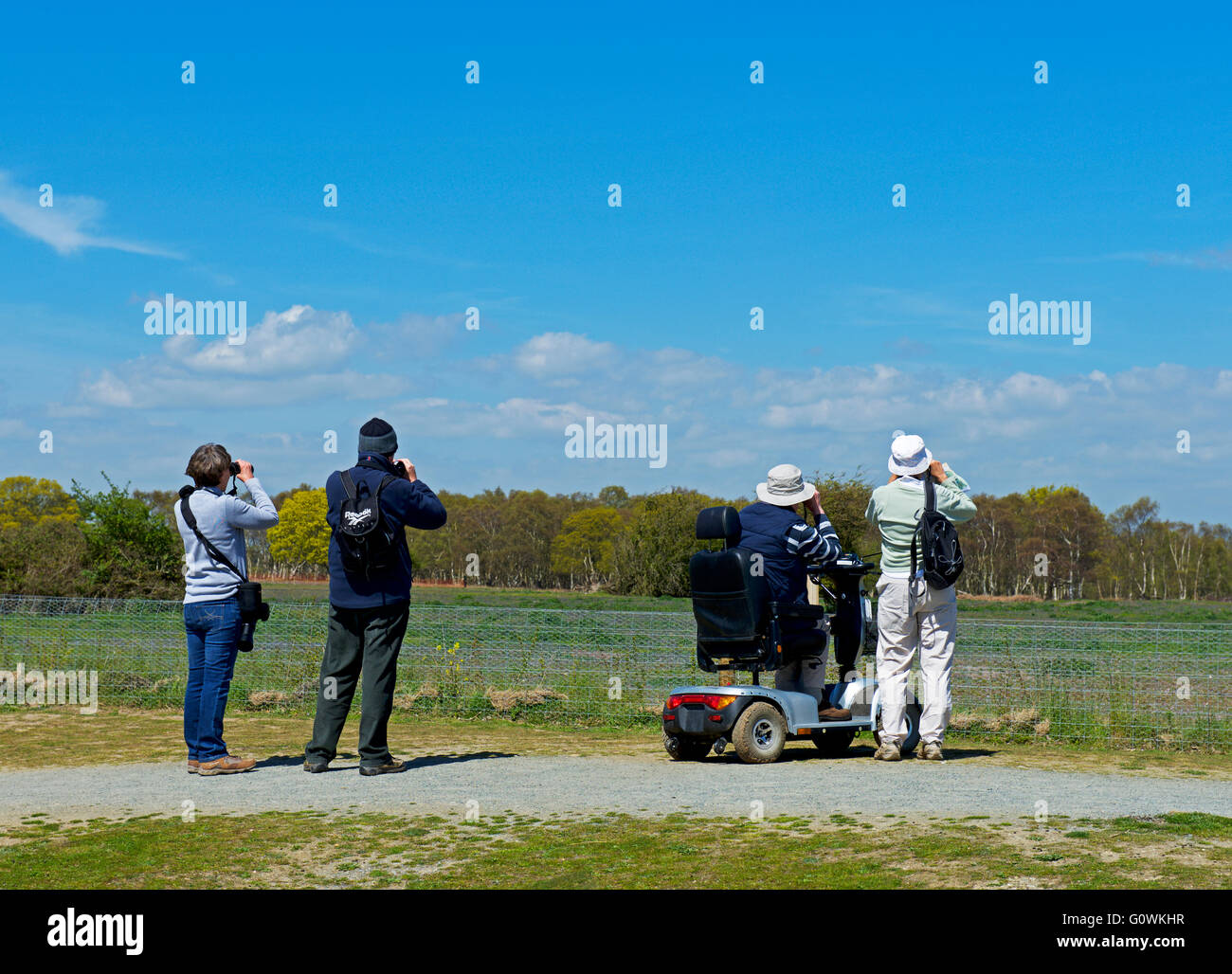 Bird watchers at Minsmere, an RSPB bird reserve, Suffolk, England UK - Stock Image