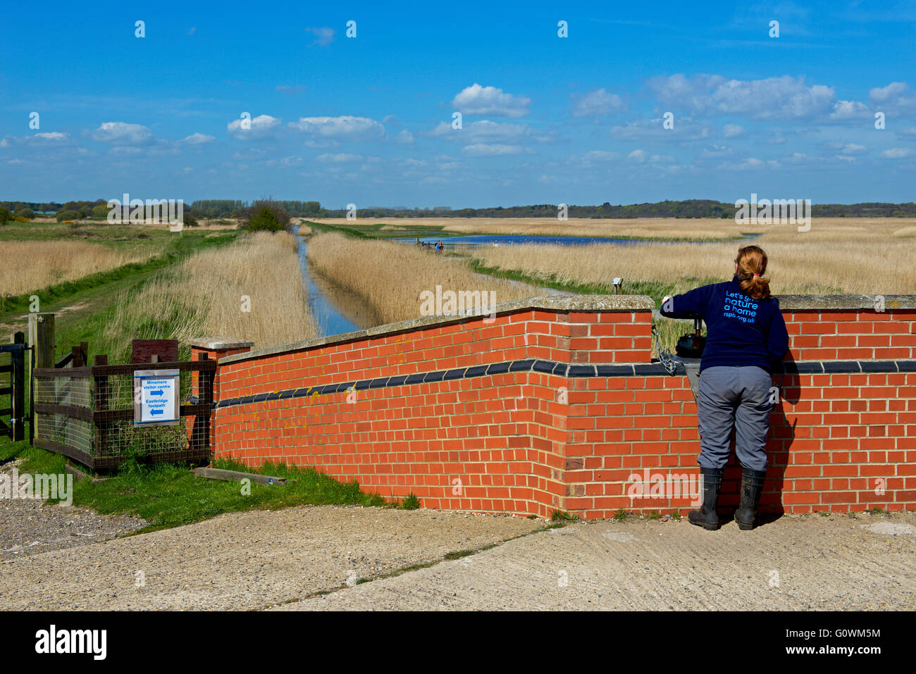 Young woman operating sluice gate at Minsmere, an RSPB bird reserve, Suffolk, England UK - Stock Image