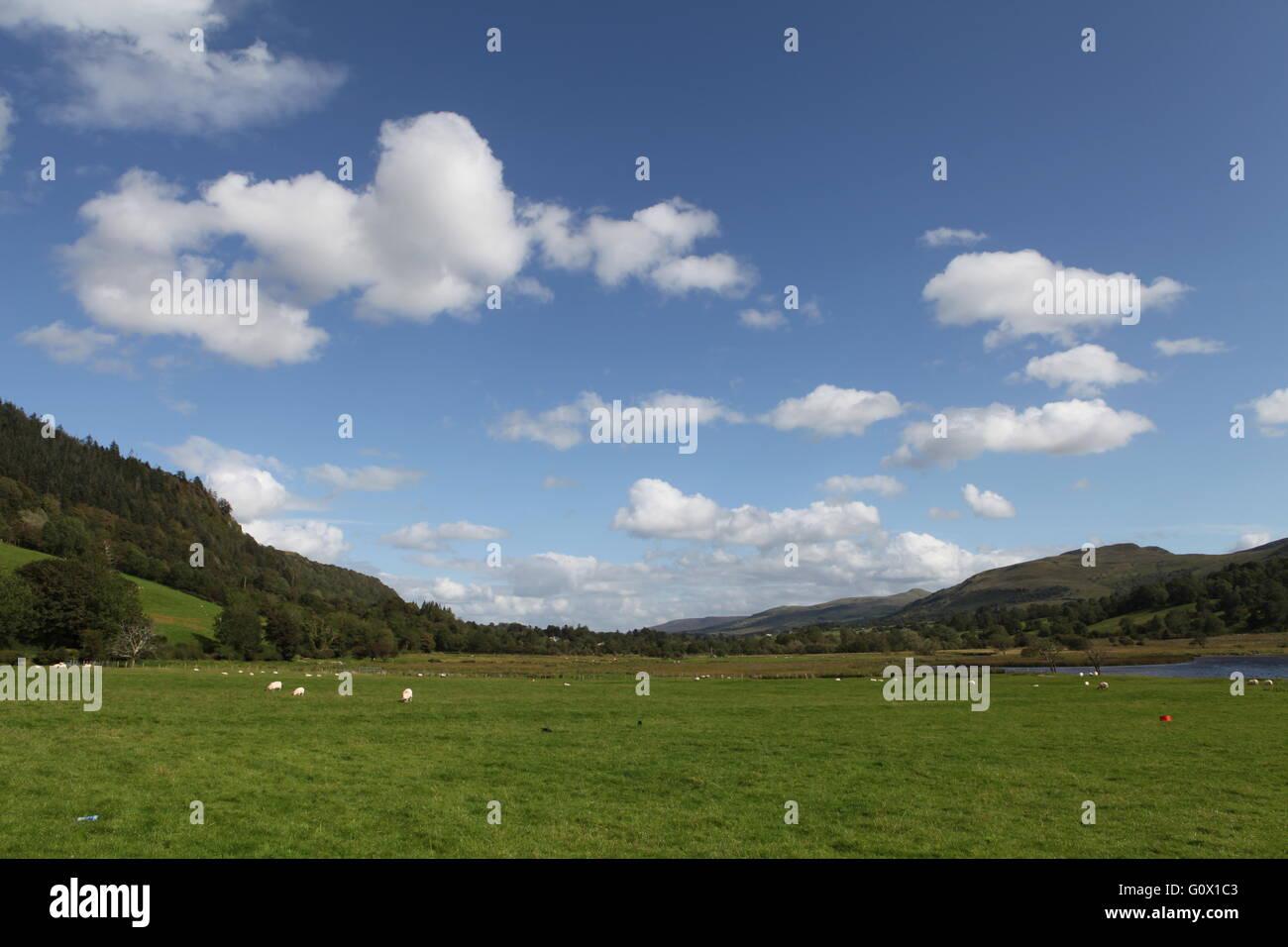 Glencar Valley, County Leitrim, Connacht, Ireland, Europe - Stock Image