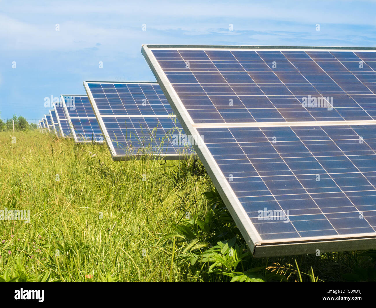 Photovoltaic panels installed in a green meadow. - Stock Image