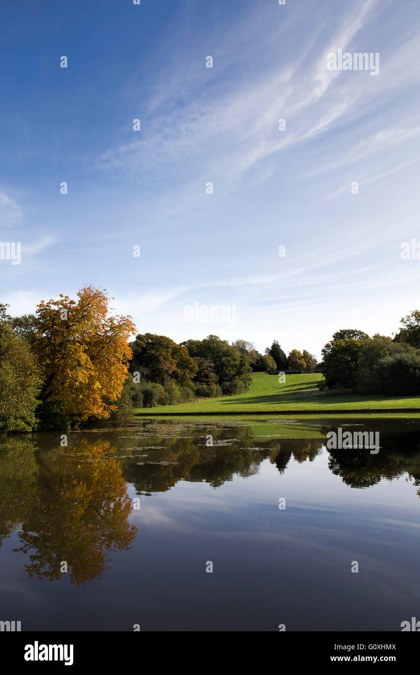 Autumnal colours near one of the lakes at Staunton Country Park, Hampshire - Stock Image