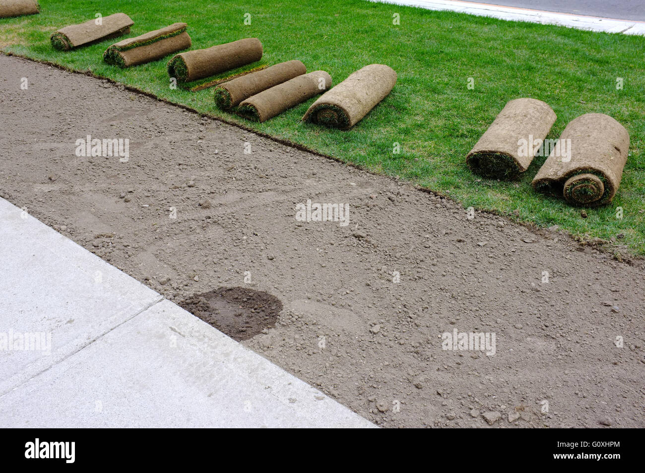 Rolls of turf being laid along a footpath in the Canadian city of London Ontario. - Stock Image