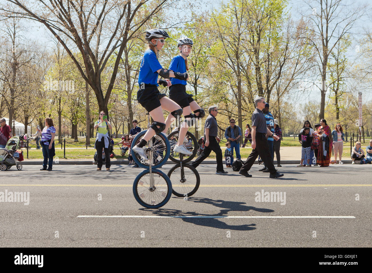 Two wheeled unicyclists at a cultural festival parade - USA - Stock Image