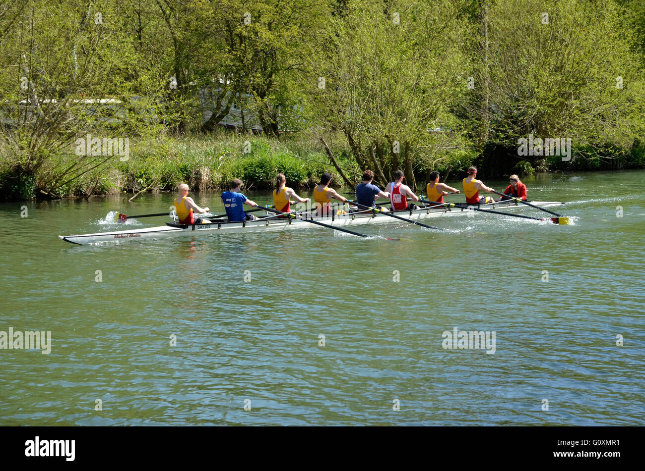 A coxed eight of Oxford University rowers on the River Thames (Isis) at Oxford, England. - Stock Image