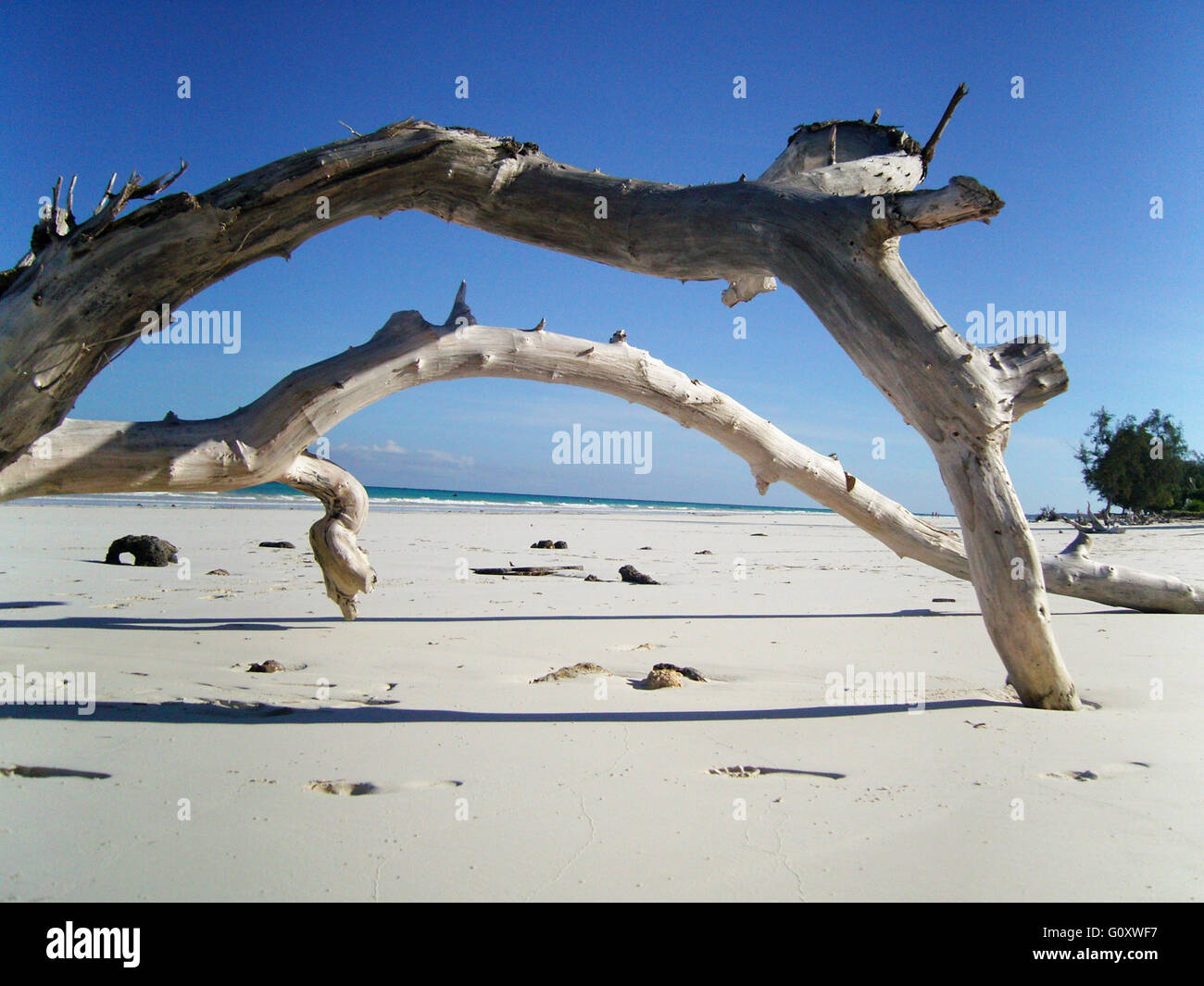 Landscape View Of Diani Beach - Stock Image