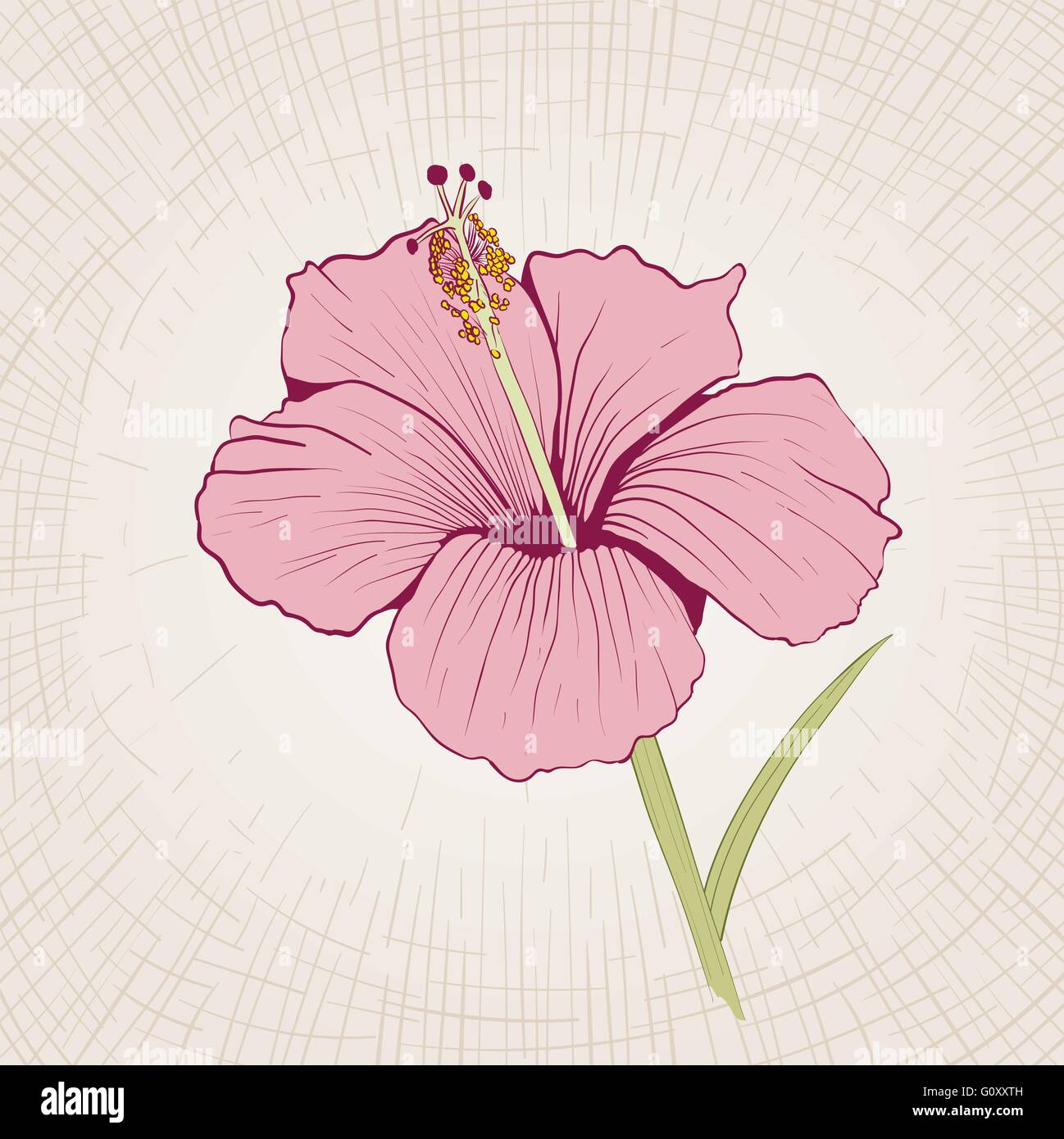 Vector hand drawn hibiscus flower global color cmyk stock vector vector hand drawn hibiscus flower global color cmyk izmirmasajfo