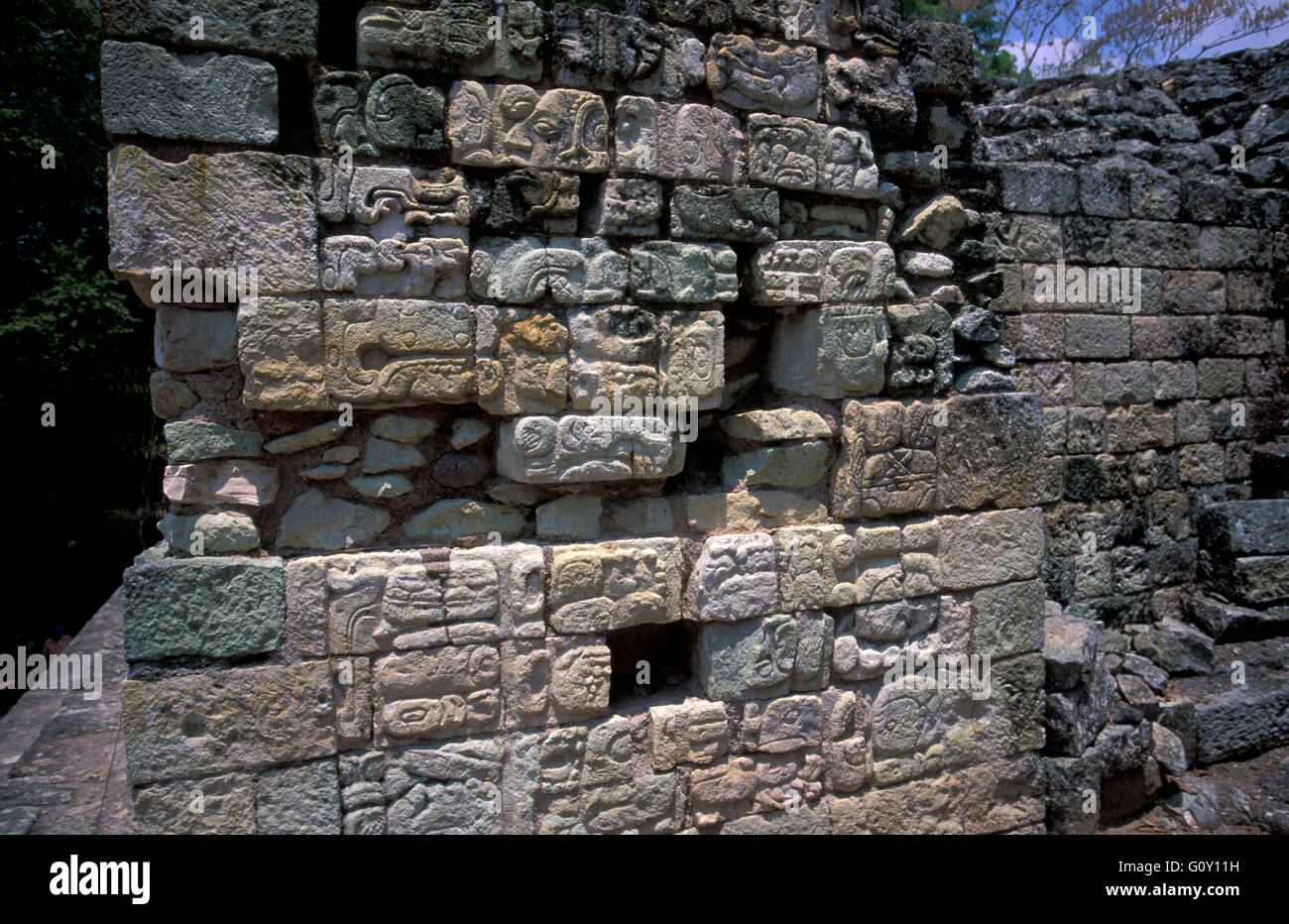 Stone bas Relief  in Copan Ruins, an archaeological site of the Maya civilization in Copan Department, Honduras - Stock Image