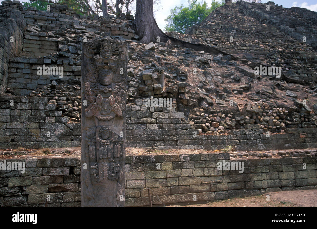 Copan Ruins, an archaeological site of the Maya civilization in Copan Department, Honduras - Stock Image