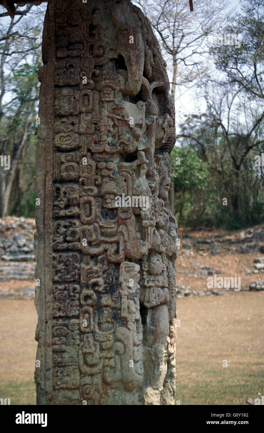 Stela D Copan Ruins, an archaeological site of the Maya civilization in Copan Department, Honduras - Stock Image