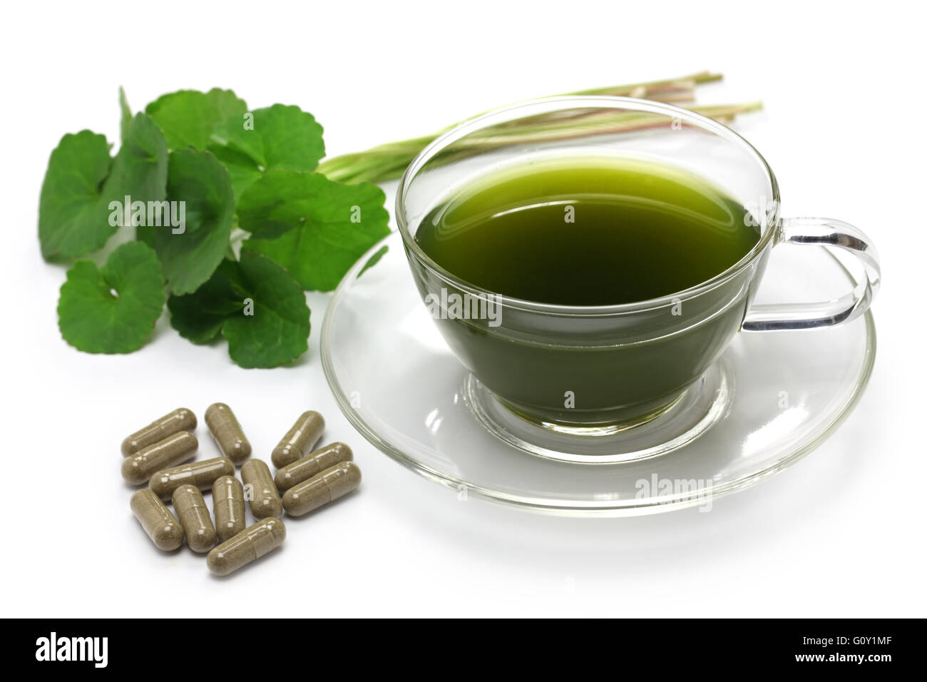 gotu kola, asiatic pennywort, centella asiatica, ayurveda herbal drink supplement - Stock Image