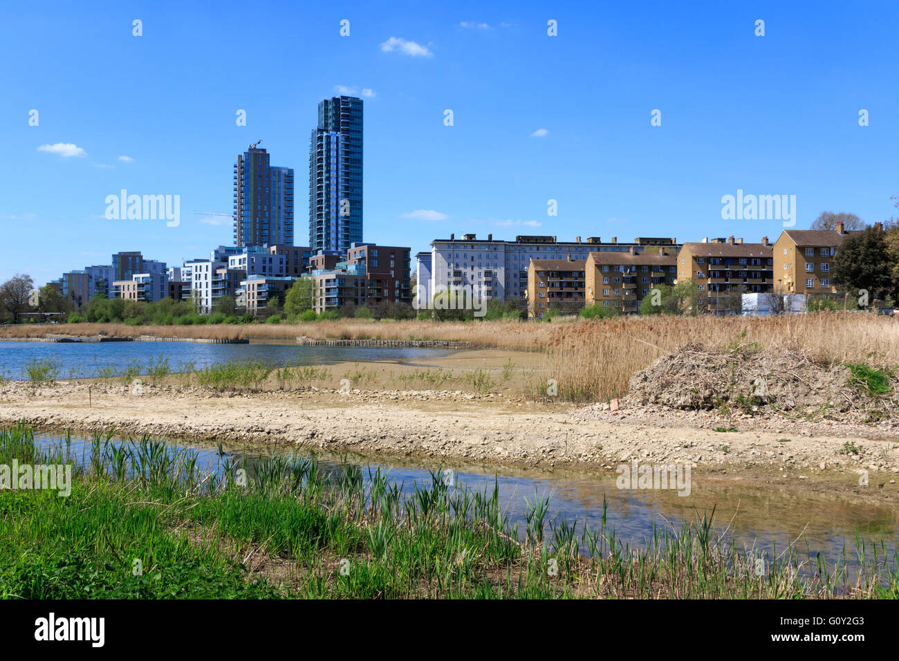 Woodberry wetlands nature reserve at Woodberry Down in London on a sunny day - Stock Image