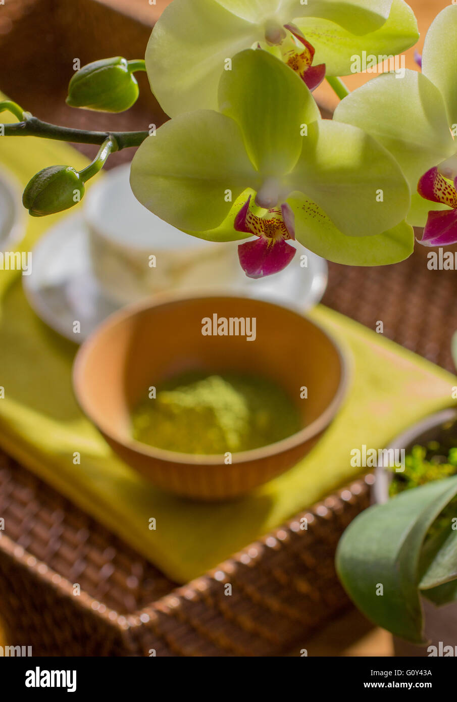 Orchids with Matcha Green Tea Powder and Tea Cup in Background - Stock Image
