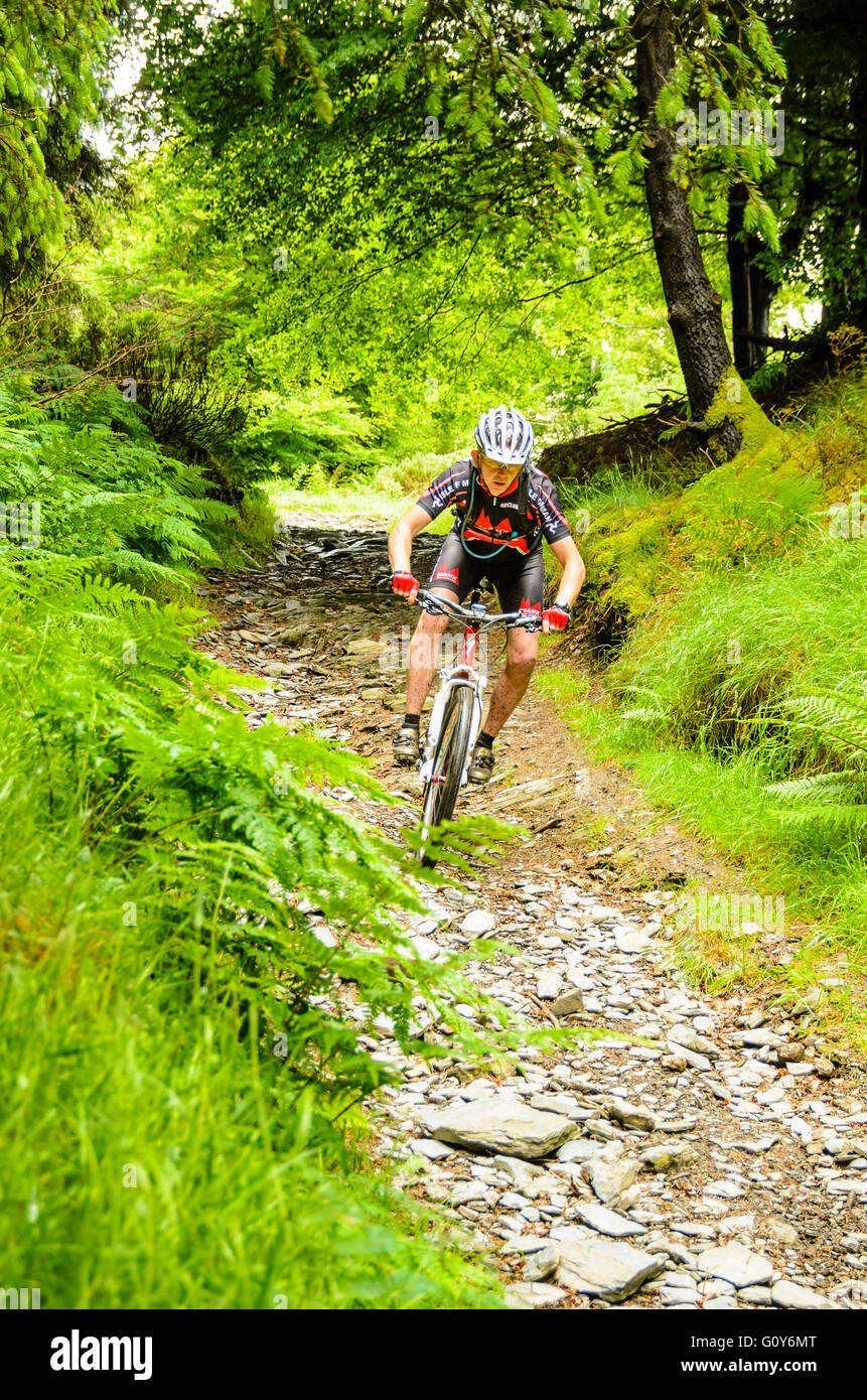 Mountain biker descending into descent into Glen Mooar in the Isle of Man Stock Photo