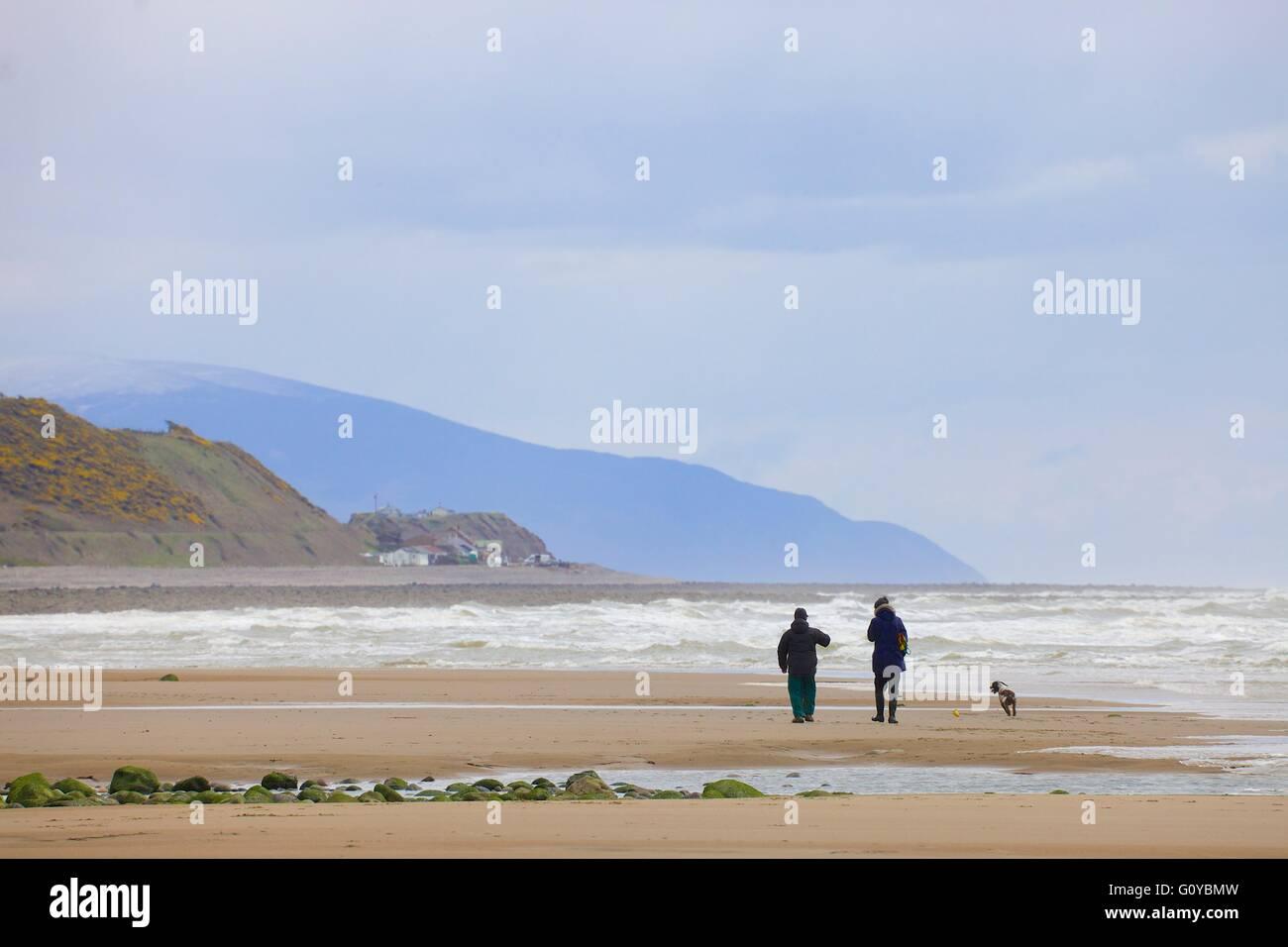 Saint Bees. Couple walking Dog on the beach. Cumbria, England, United Kingdom, Europe. - Stock Image