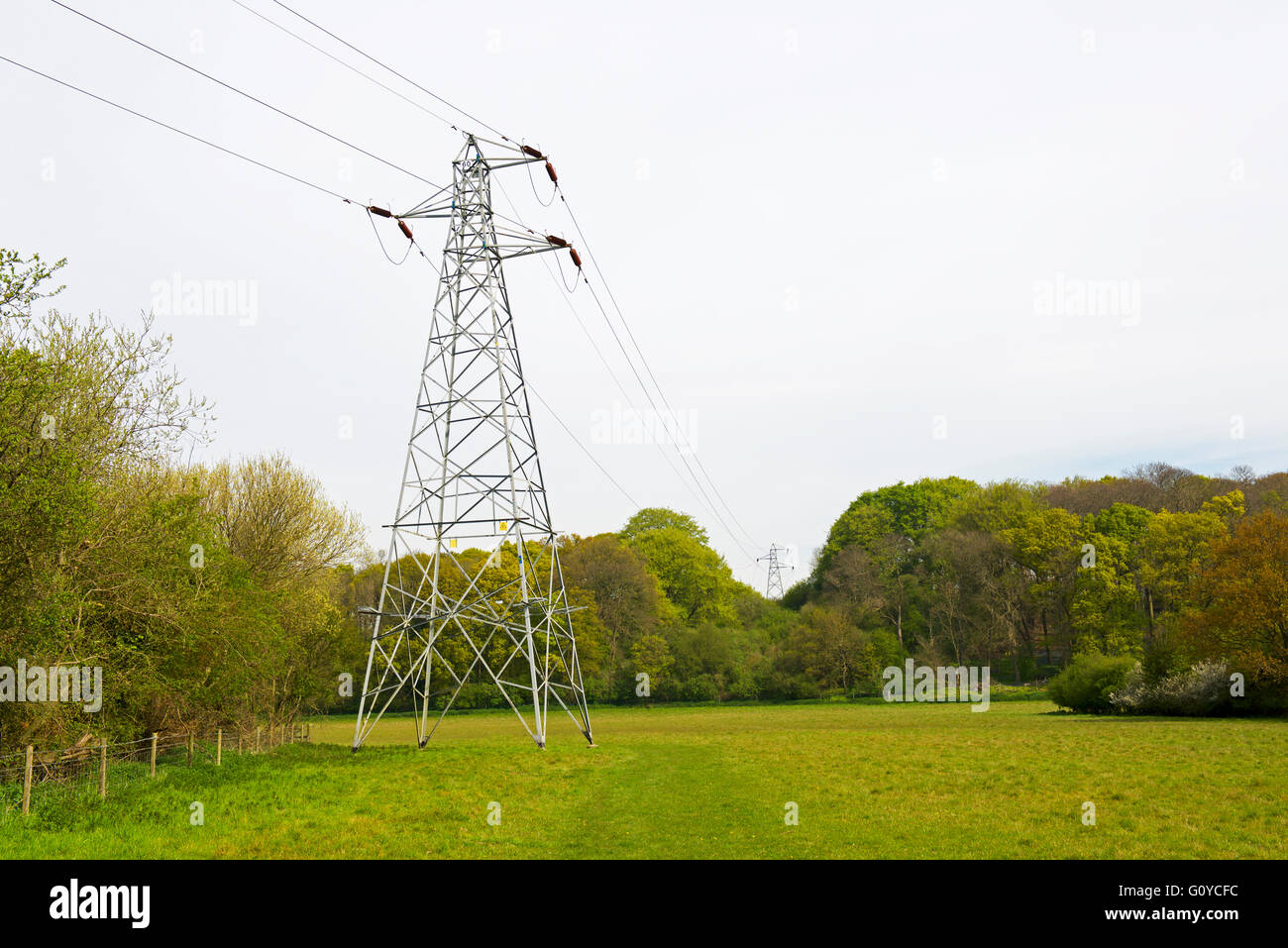 Electricity pylons spanning fields near Flatford, Dedham Vale, Essex, England UK - Stock Image