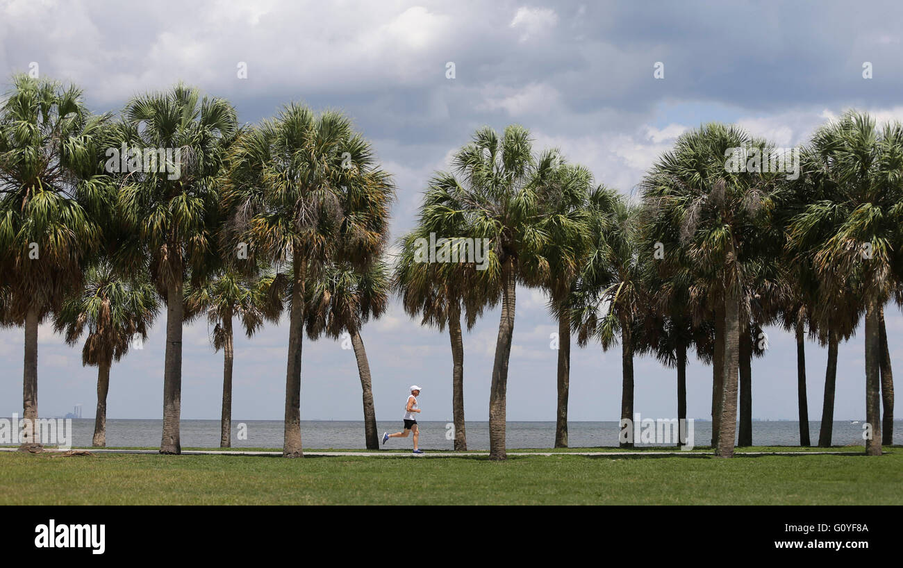 St. Petersburg, Florida, USA. 5th May, 2016. DIRK SHADD | Times .Aaron Freedman, 52, from St. Petersburg, goes for Stock Photo