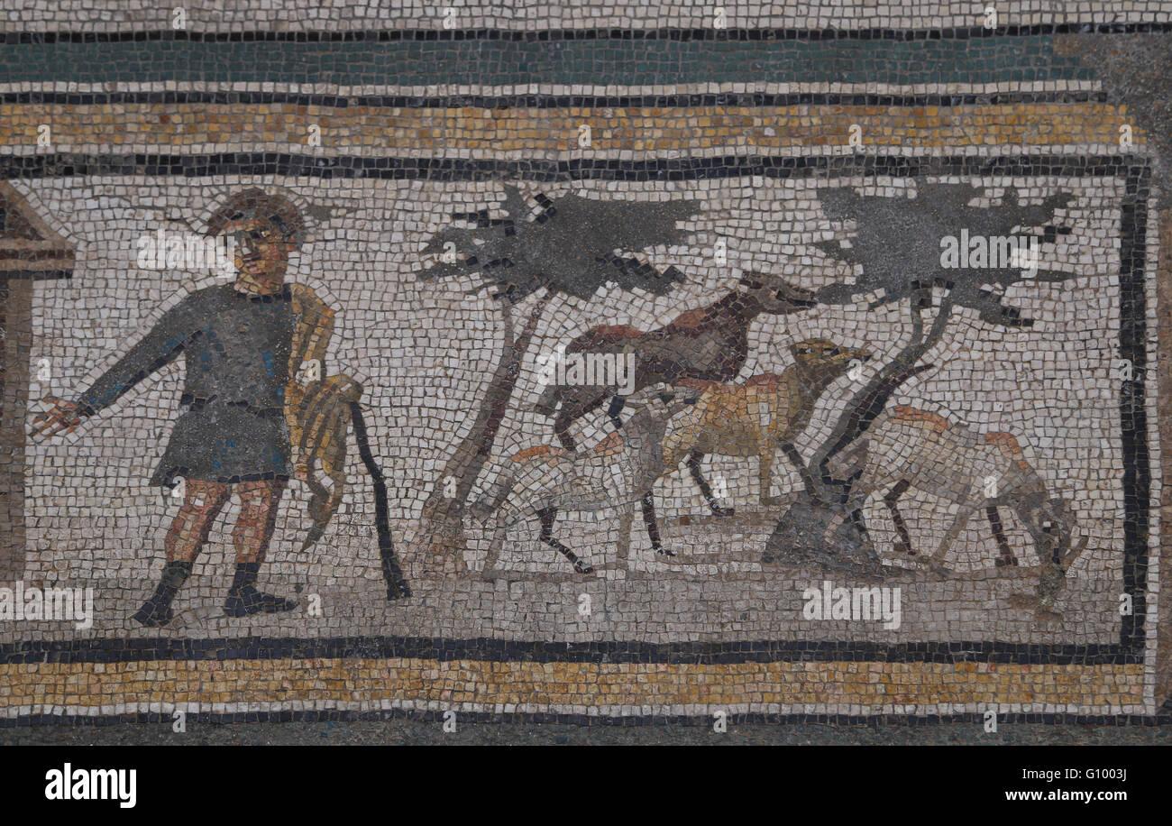 Mosaic of the Four Seasons. C. 325 AD. Shepherd.  Found in Daphne (now Antakya, Turkey). Roman. Louvre Museum. Paris. - Stock Image