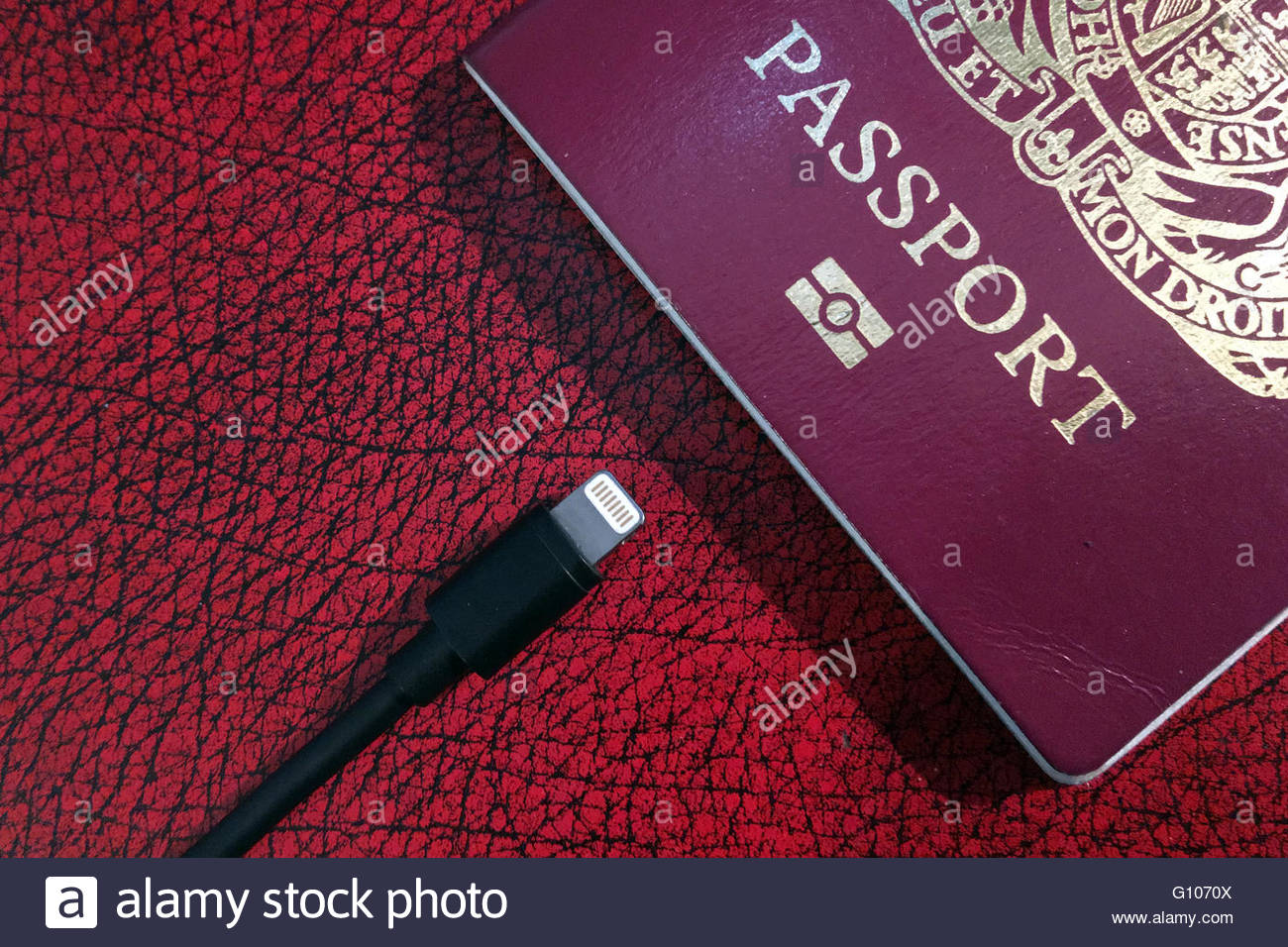 Biometric Uk Passport With Embedded Electronic Chip
