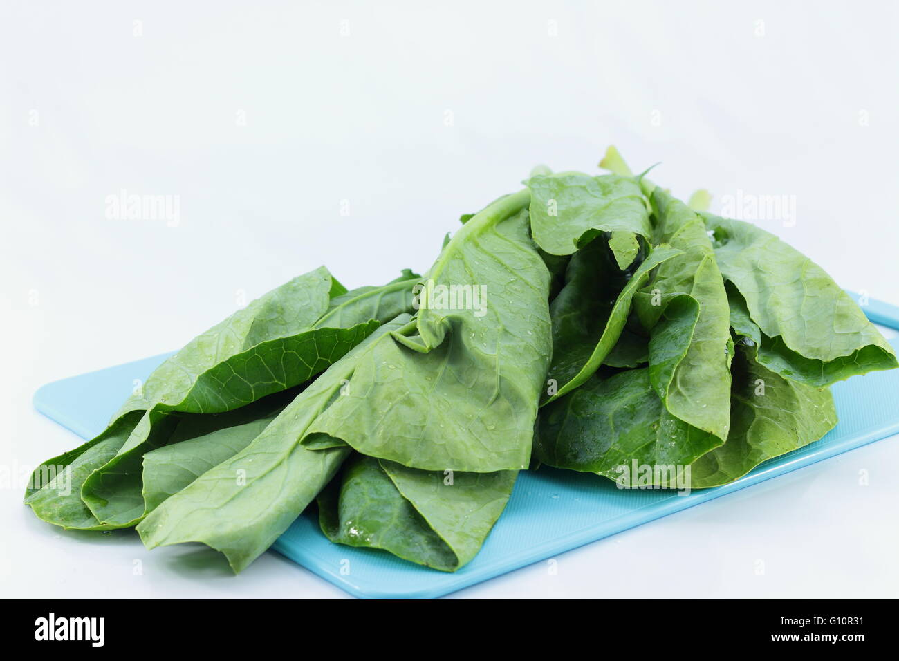 collards with hot weather is not fresh - Stock Image
