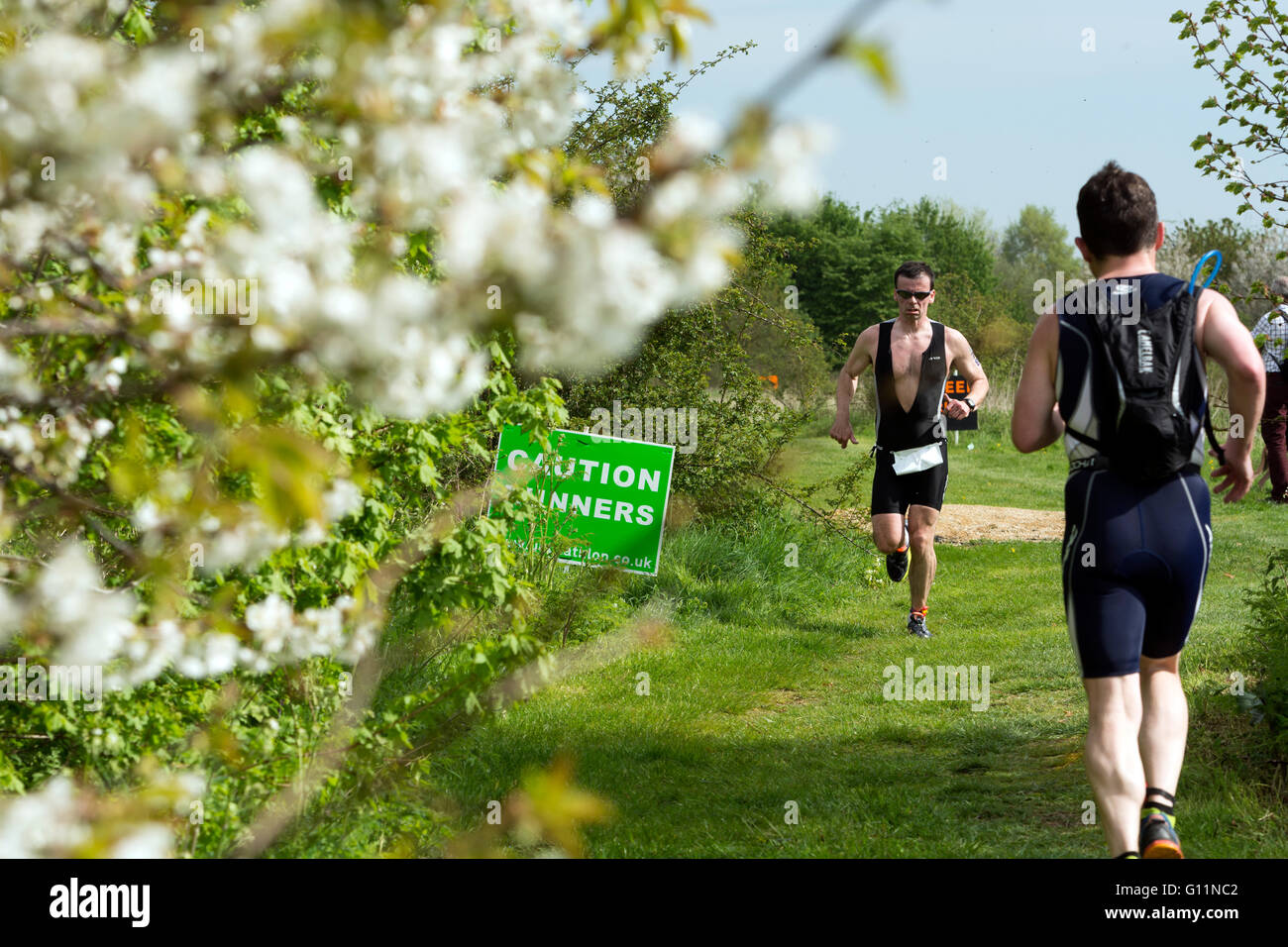 Stratford-upon-Avon, Warwickshire, UK. 8th May, 2016. Competitors pass spring blossom in the running stage of the - Stock Image