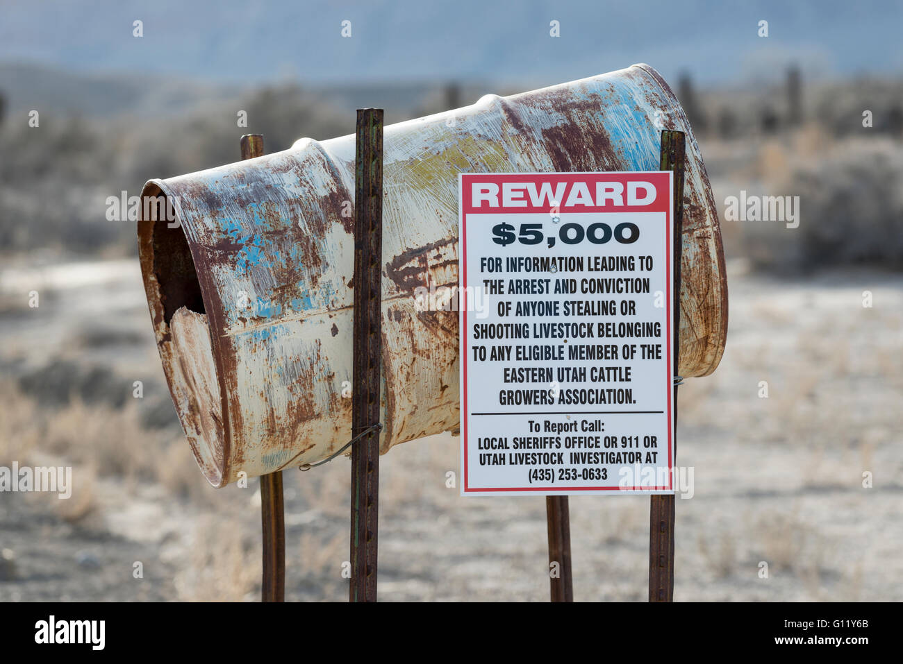 Sign in Southern Utah offering a reward for shooting or stealing cattle. - Stock Image