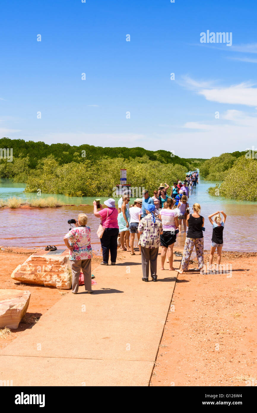 People gathering for the highest tide of the year which covers Streeter's Jetty, Broome, Kimberley, Western - Stock Image
