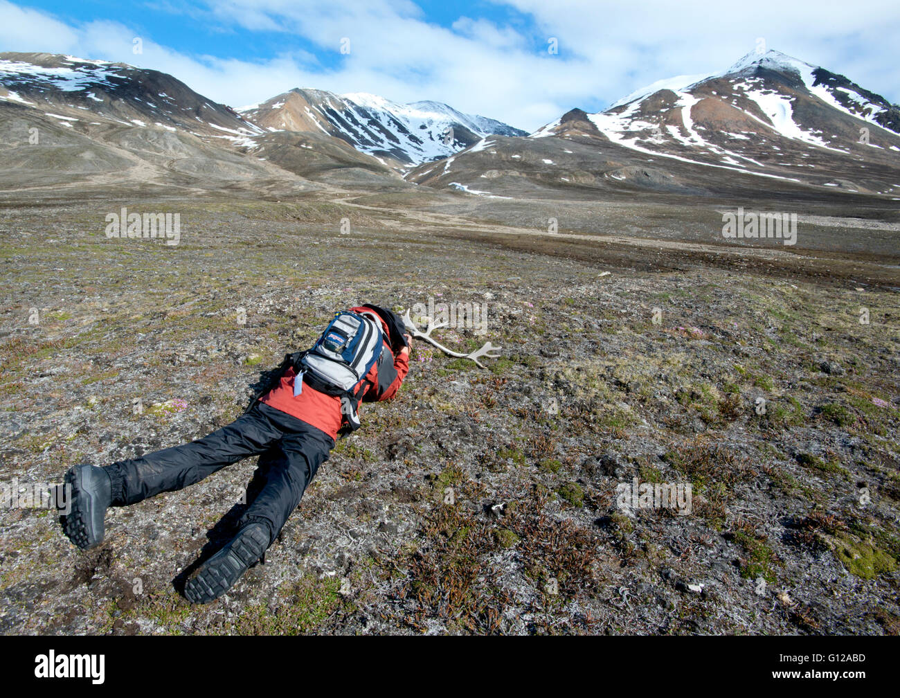 Europe, Norway, Svalbard, Photographing reindeer antler in tundra, Engelsbukta - Stock Image