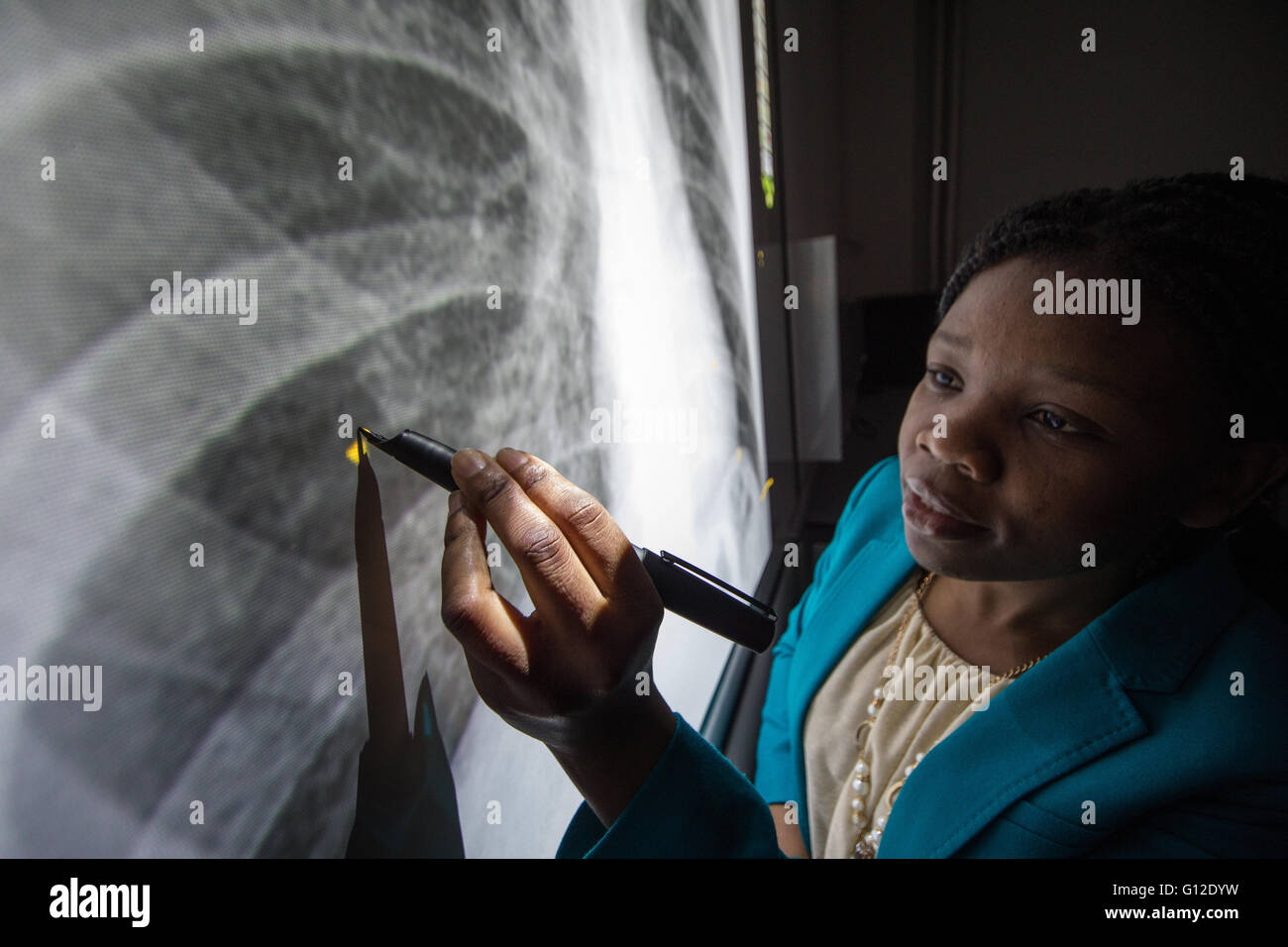 Radiography students using ultrasound and x-rays - Stock Image
