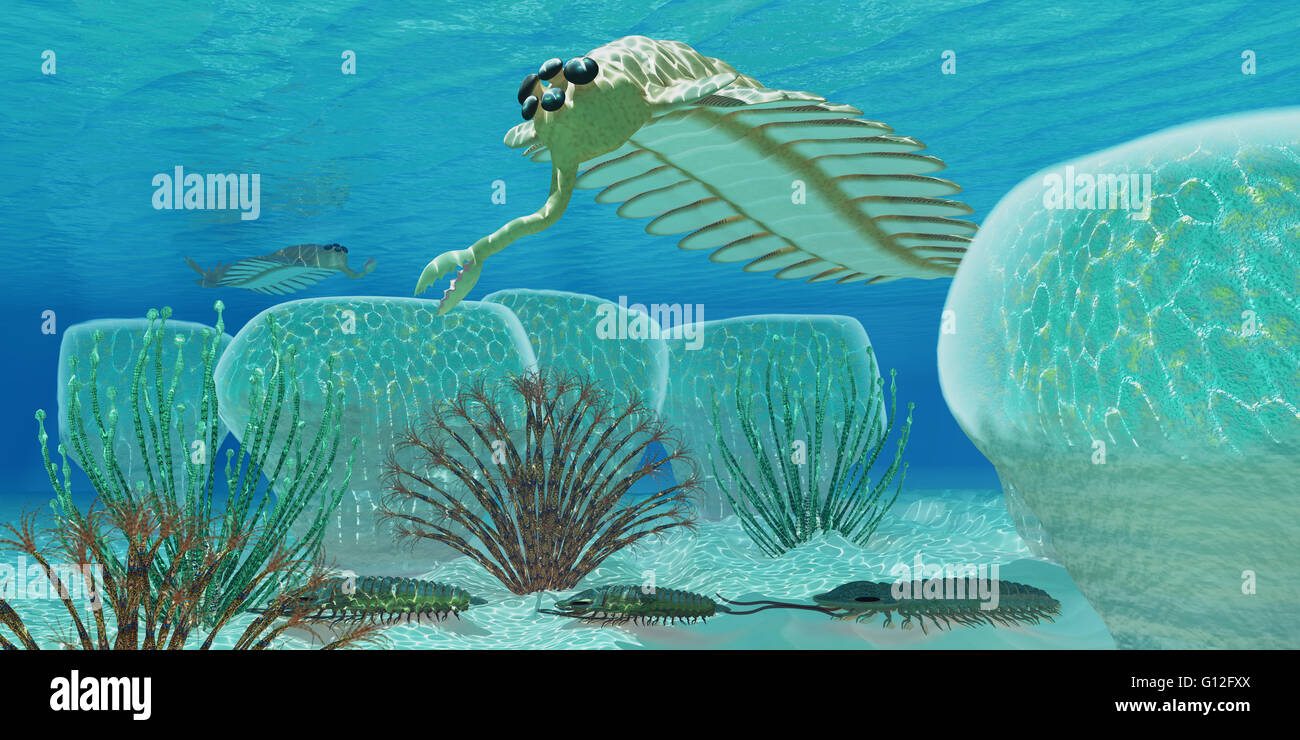 Trilobites Try To Hide From Predator Opabinia In A Cambrian Sea Full Stock Photo 103933282 Alamy