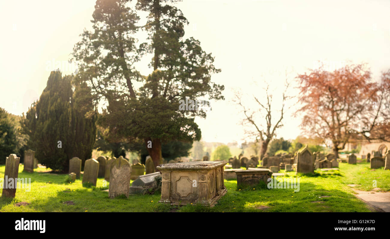 panorama of the old graveyard - Stock Image