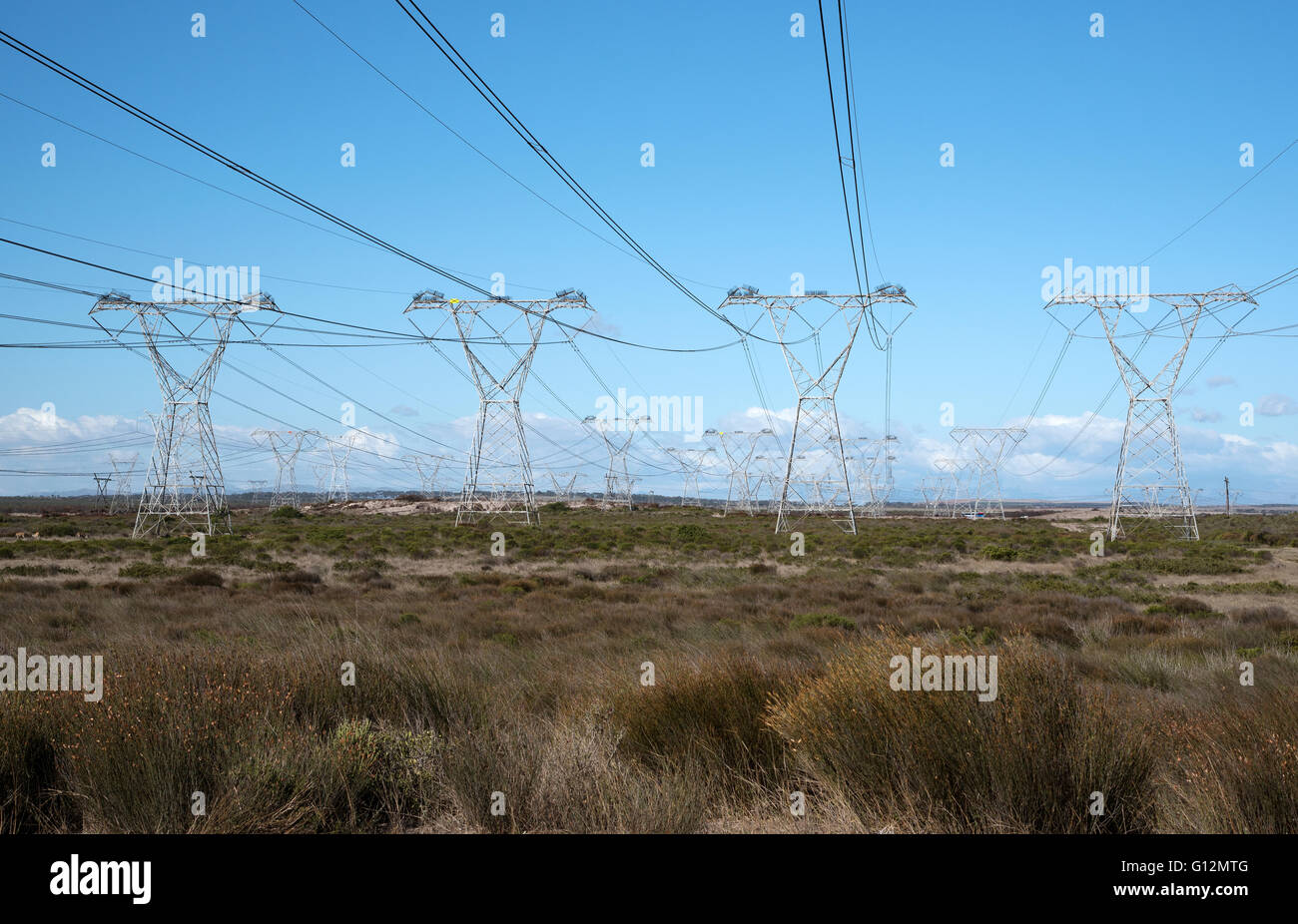 Power lines feed electricity to the national grid from the Koeberg nuclear power station at Melkbosstrand north - Stock Image